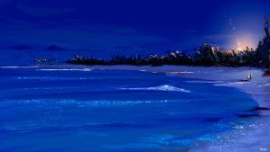 Island life by Night. by PascalCampion