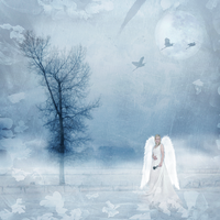 Winters Dream by Inadesign