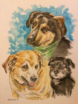 3 dogs commission by Walmsley