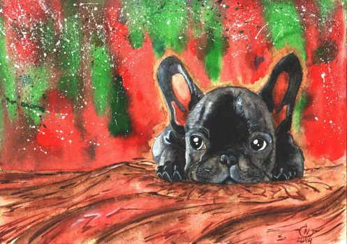 A French Bulldog Puppy /gift/ by nakovalnya-artist