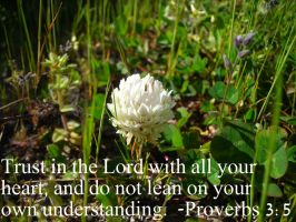 Trust in the Lord by CreationDeclares
