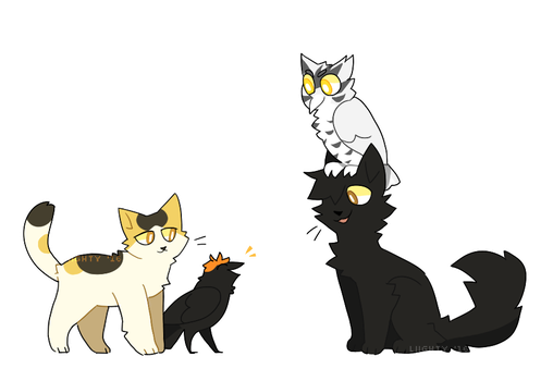 birbs and cats by stArchaeopteryx