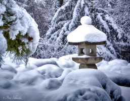 After the snowfall. by Phototubby