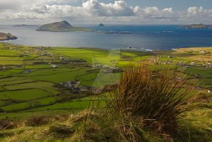 Out West Dunquin by cprmay