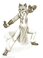 Kung-Fu Fox by Fox7XD