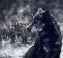 Wolf (666) by IvonaVasileva