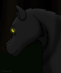 Shadow Wolf 2 by horse14t