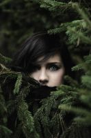 the girl of pine by collien