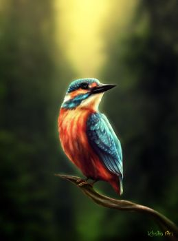 Kamiote the Kingfisher by KhaliaArt