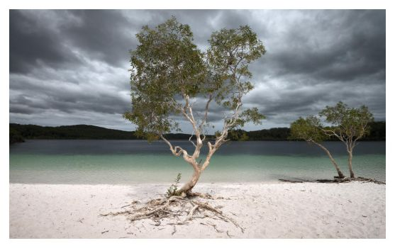 Storm at Lake McKenzie by Cameron-Jung
