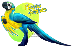 Custom Byubuu - Macaw Feathers by M4WiE