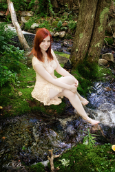 Summer in the Forest 2 by EveVictus