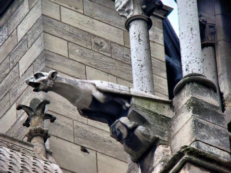 Gargoyle from Notre Dame de Paris by semeniuc