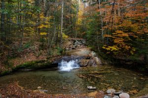 White Mountains  Fall Foliage  270 by FairieGoodMother
