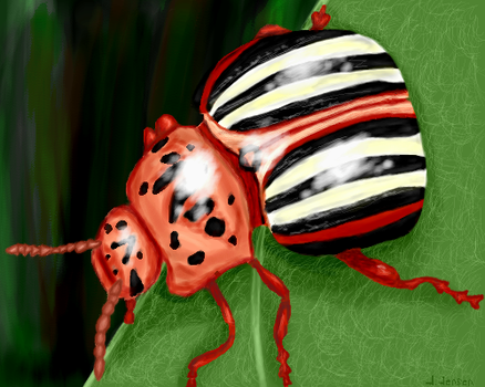 Potato Bug by purplefeltpen