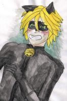 Chat Noir by DosadiVH