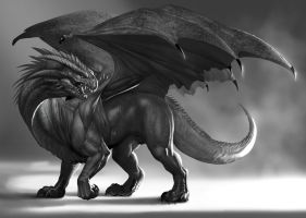 DragonStudy by Zamberz
