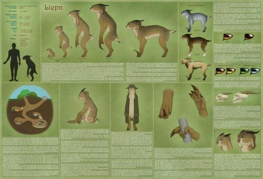 Liepns - Reference Sheet by Birvan