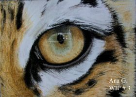 Tiger eye in tinted charcoal WIP # 3 by TinyAna