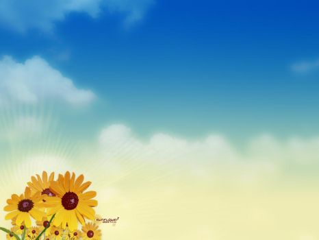 Sunflowers by andyhutchinson