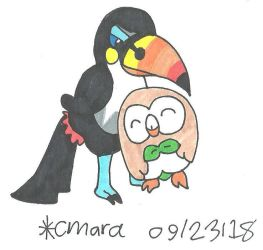 Toucannon and Rowlet by cmara