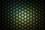 Flower of Life by JanRobbe