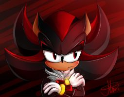 Shadow the Hedgehog by MereldenWinter