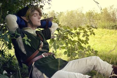 Link Cosplay #6 by Laovaan