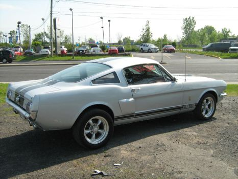 Mustang Shelby GT350 1966 by vfrrich