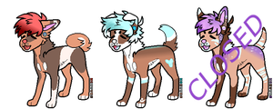 Pastel Color Adopts (2/3 OPEN) by TowBird