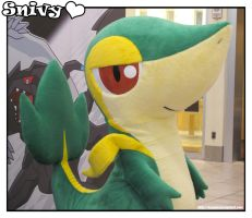 Snivy - Mall Tour