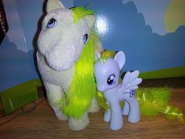 PonyCustom::Surprise: by Rayne-Is-Butts