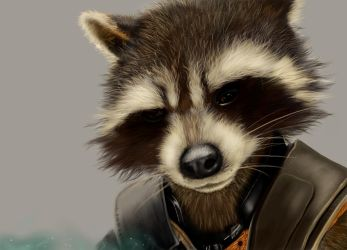 Rocket Raccoon by Ratty103