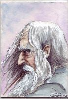 Gandalf the Grey by ringbearer80