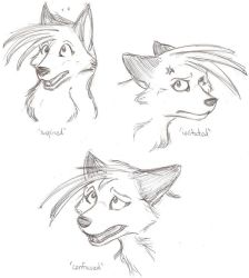 Expression Practice 1 of 9 by ZekiWolf