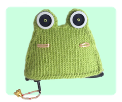 Frog Coin Purse Front View by AmareeLis
