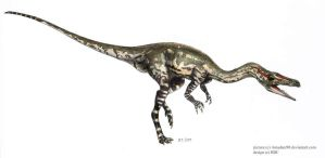 Coelophysis by Amadare90