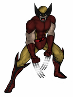 Wolverine by vindications