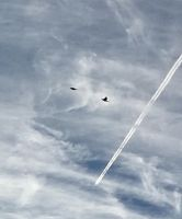 Two Planes  Two Birds by Midniteclubber