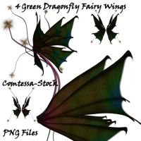 Wings - Green Dragonfly Fairy by Comtessa-Stock