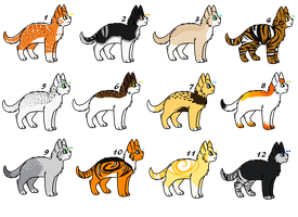 Cat Adoptable Sheet [open] by Koeyna