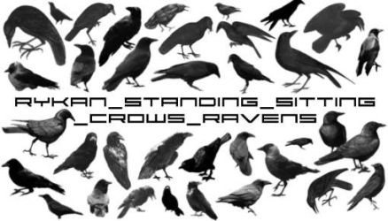 Standing_Crows_Raven brushes by Rykan
