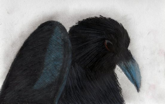Oil Pastel Crow by Werepyre-Queen