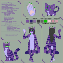 Lavander Kitty Reference Sheet by BlueFoxThom