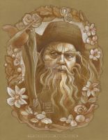 Radagast the Brown by BohemianWeasel