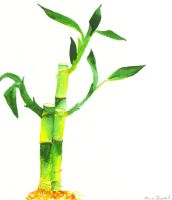 watercolor bamboo by frost-rot