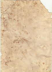 Old Scroll Texture by Esther-Sanz