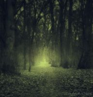 The Memory Of Trees III by lady-amarillis