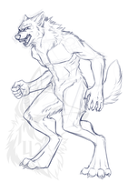 Werewolf Sketch - Dillon Woulfe - WIP by IrishWolven