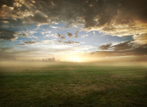 Grassy field sunset - FREE STOCK by kevron2001